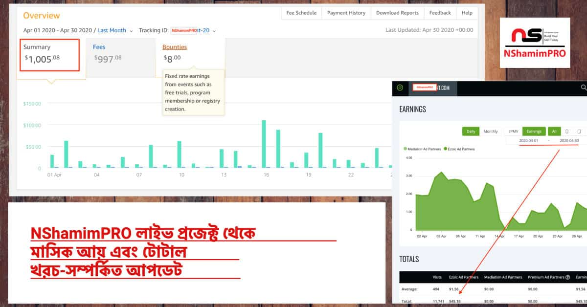 nshamimpro live project earning and expenses (1)
